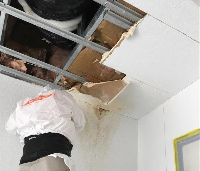 Tamarac Home Mold From Roof Leak Before