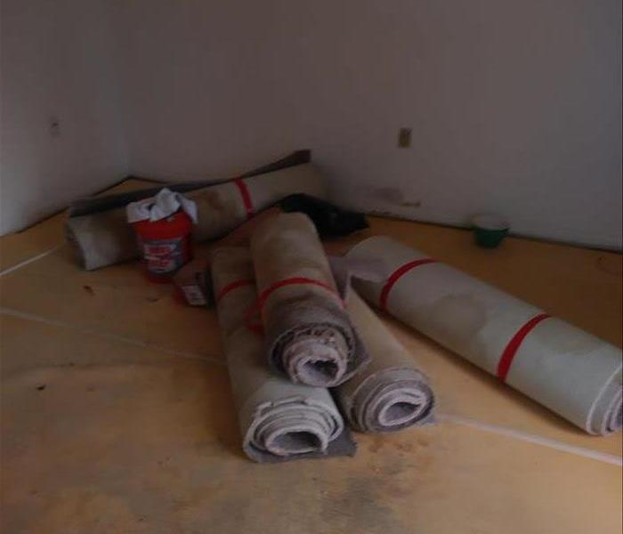 Carpets Full Of Mold Removed From Coral Springs Home